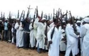 Tchad: les autorités démentent l'infiltration de membres de Boko Haram dans ACTUALITES image.aspx_-300x191