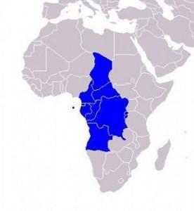 Le Tchad accueille un prochain sommet extraordinaire de la CEEAC sur la Centrafrique dans ACTUALITES int-23982-276x300