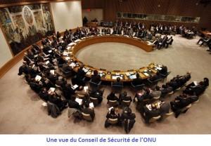 Le Tchad membre non permanent du Conseil de Sécurité de l'ONU?  dans ACTUALITES article_onu-300x208