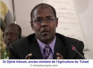 Cilss: le tchadien Dr Djimé Adoum prend les rênes du secrétariat exécutif dans ACTUALITES 1375260345554-300x221