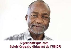 Tchad: la levée de l'immunité de Saleh Kebzabo en étude dans ACTUALITES 1375690695743-300x208