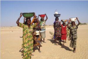 Tchad : Les femmes doivent avoir un accès équitable aux moyens de production dans ACTUALITES int-47933