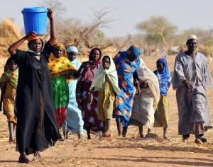 Tchad : Réduire les inégalités entre les hommes et les femmes en milieu rural dans ACTUALITES 1287934247904-300x236