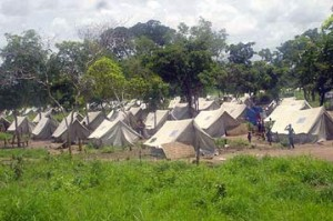 Le Tchad met en garde toute répercussion contre les réfugiés centrafricains dans ACTUALITES